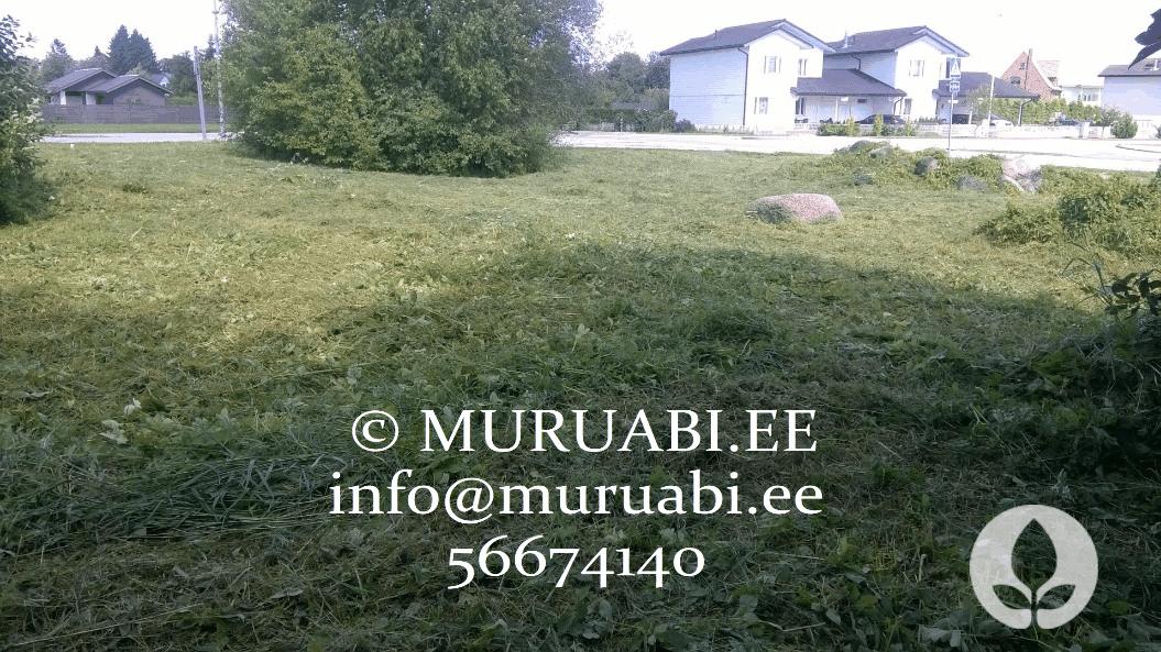 Trimmerdamine ja muru niitmine Tallinnas ja Harjumaal. Muruabi.